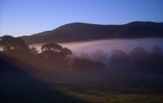 morning mist front of house clough head in backgroung